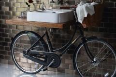 Arcade_Bicycle